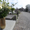 Ladri al cimitero, spariscono decine di lumini
