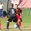 Calcio giovanile, in casa Fbc Saronno battuti Giovanissimi e Esordienti