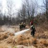 Un video sull'incendio nelle Groane: i danni del fuoco