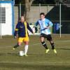 Calcio Arconatese-Fbc Saronno, il fotoracconto della partita