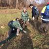 Parco Groane, guardie ecologiche in campo per salvare i rospi