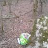 Uboldo: prima della marcia le pulizie, boschi pieni di rifiuti