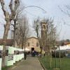 Madona de marz, tanti eventi a Cogliate: dalla processione all'albero della cuccagna