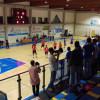 Volley serie B: Pallavolo Saronno vince il derby con l'Insubria… ma che fatica!