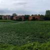 Cerchi nel grano tra Saronno e Cogliate