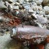Dal torrente Lura emerge un residuato bellico