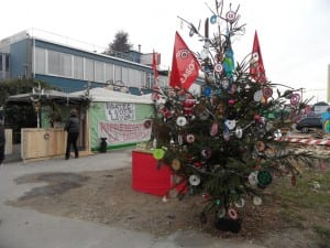 albero di natale 2011 ims (4)