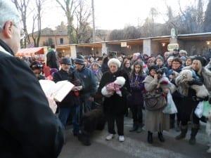 Sant'Antonio benedizione animali 2013 (3)
