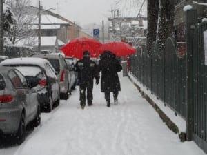 neve nevicata a macchia di leopardo (4)