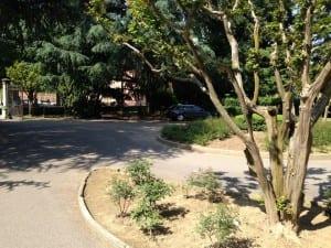 stradine parco villa gianetti