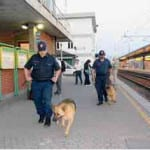 cani in stazione