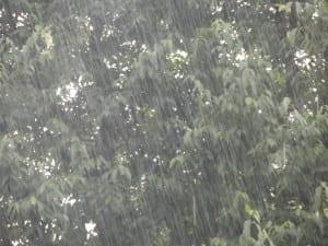 acquazzone pioggia saronno (2)