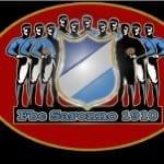 marcia orgoglio biancoceleste logo