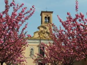 san francesco chiesa primavera saronno (1)
