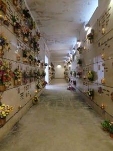 26042015 cimitero corpo f infiltrazioni (7)