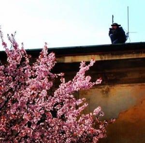 17032016 anarchiche sul tetto primavera