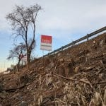 20180105 piante abbattute via grandi, via battisti (2)